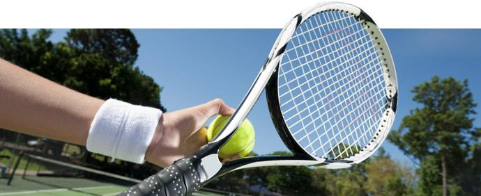 Ultimate Tennis The Premier Flex Tennis League